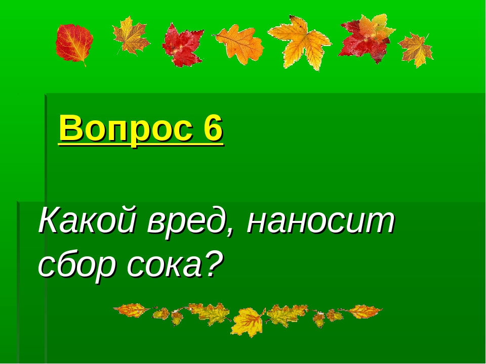 Вопрос 6 Какой вред, наносит сбор сока?