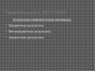 Приложение к ООП НОО Контрольно-измерительные материалы: Предметные результат