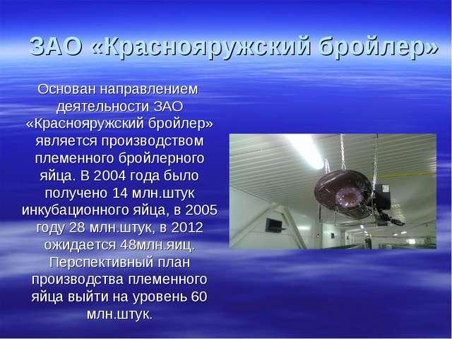 Основан направлением деятельности ЗАО «Краснояружский бройлер» является произ...