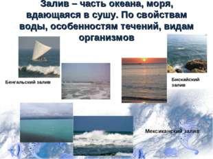 Залив – часть океана, моря, вдающаяся в сушу. По свойствам воды, особенностям