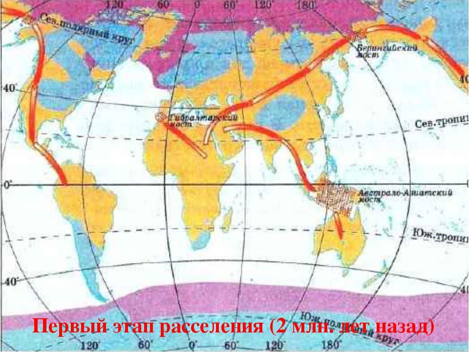 Первый этап расселения (2 млн. лет назад)