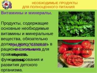 НЕОБХОДИМЫЕ ПРОДУКТЫ ДЛЯ ПОЛНОЦЕННОГО ПИТАНИЯ Витамины и минералы. Продукты,