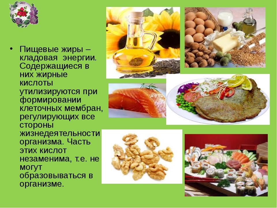 Жиры. Пищевые жиры – кладовая энергии. Содержащиеся в них жирные кислоты утил...