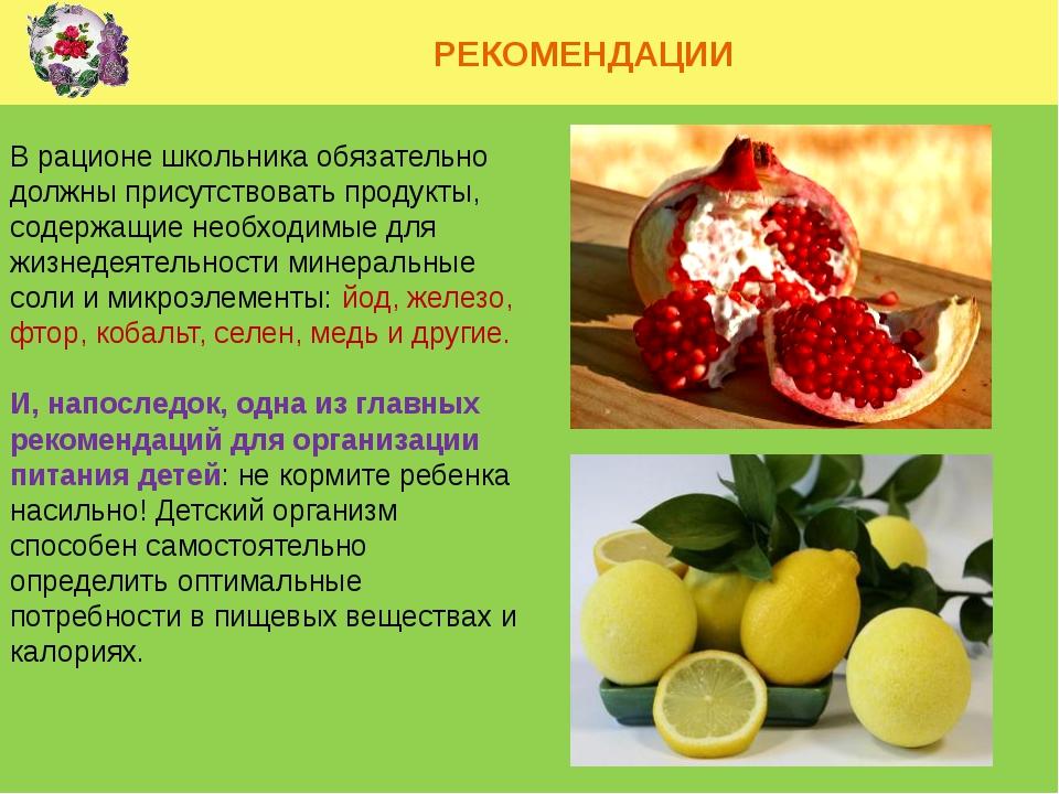 РЕКОМЕНДАЦИИ В рационе школьника обязательно должны присутствовать продукты,...