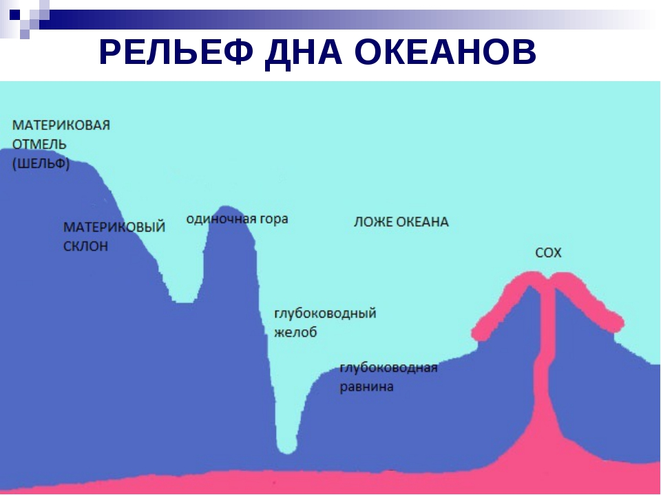 РЕЛЬЕФ ДНА ОКЕАНОВ