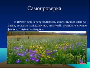 Самопроверка В начале лета в лесу появилось много цветов: иван-да-марья, лило