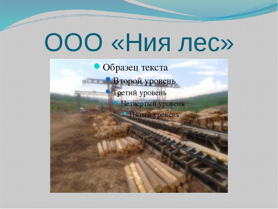 ООО «Ния лес»