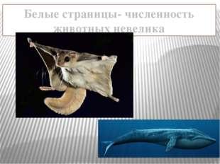 Белые страницы- численность животных невелика