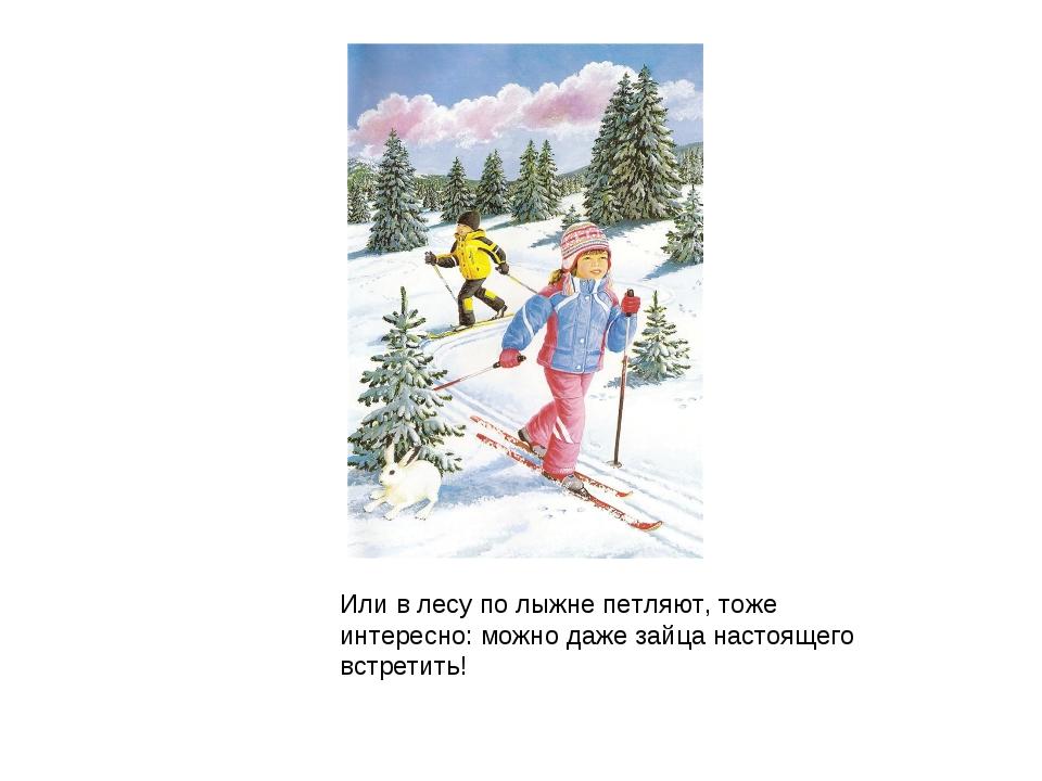Или в лесу по лыжне петляют, тоже интересно: можно даже зайца настоящего встр...