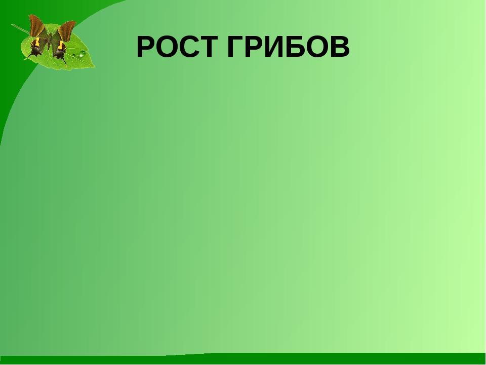 РОСТ ГРИБОВ