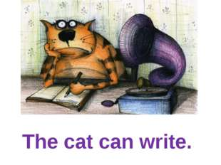 The cat can write.