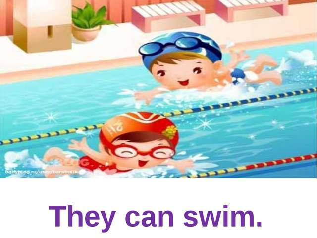 They can swim.