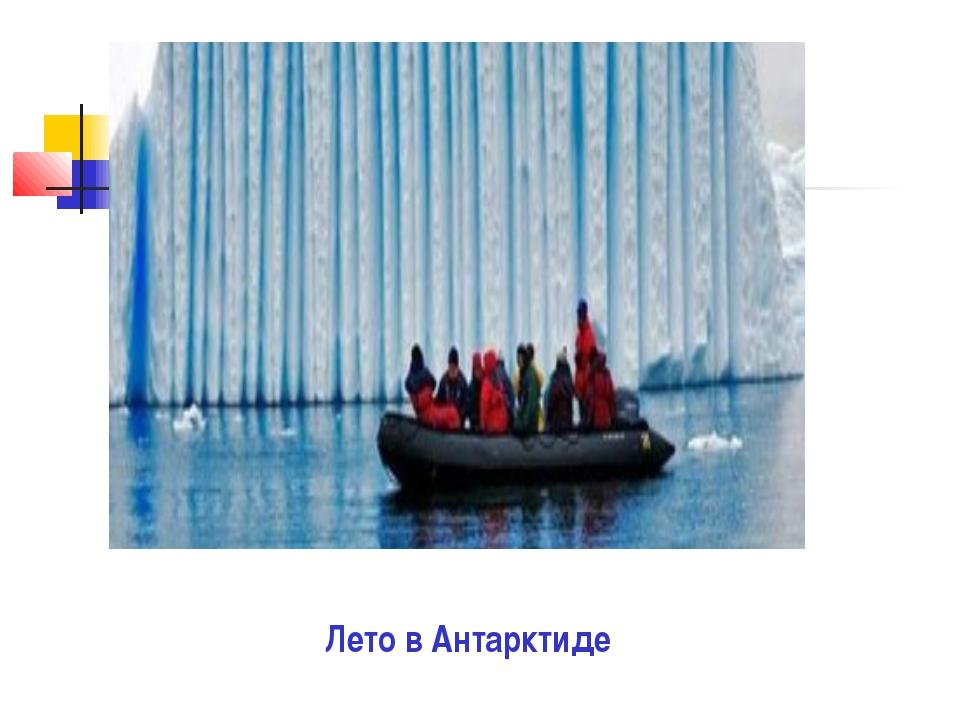 Лето в Антарктиде