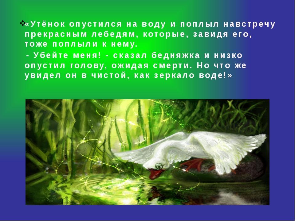 «Утёнок опустился на воду и поплыл навстречу прекрасным лебедям, которые, за...