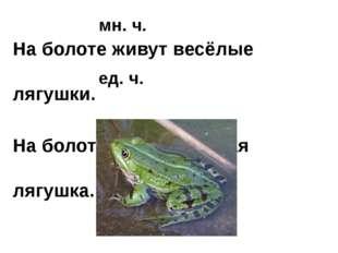 На болоте живут весёлые лягушки. На болоте живёт весёлая лягушка. мн. ч. ед. ч.