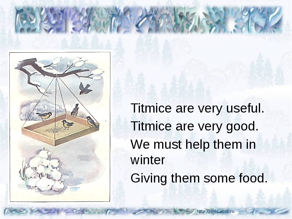 Titmice are very useful. Titmice are very good. We must help them in winter...