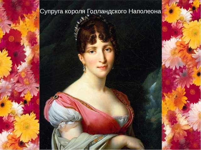 Супруга короля Голландского Наполеона
