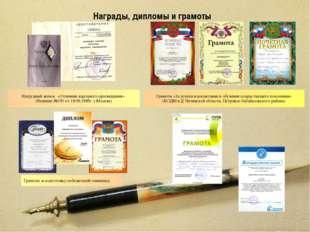 Награды, дипломы и грамоты Нагрудный значок «Отличник народного просвещения»