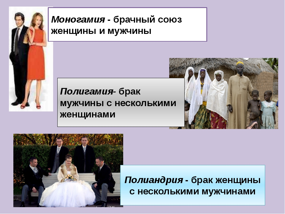 Моногамия - брачный союз женщины и мужчины Полиандрия - брак женщины с нескол...