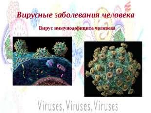Вирусные заболевания человека Вирус иммунодефицита человека