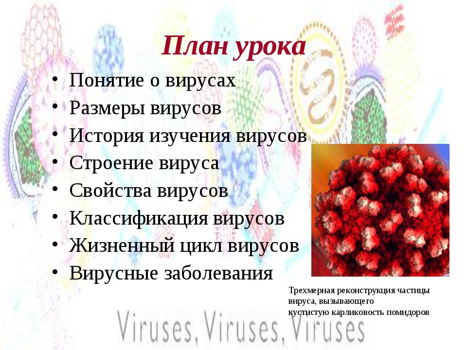 План урока Понятие о вирусах Размеры вирусов История изучения вирусов Строени...