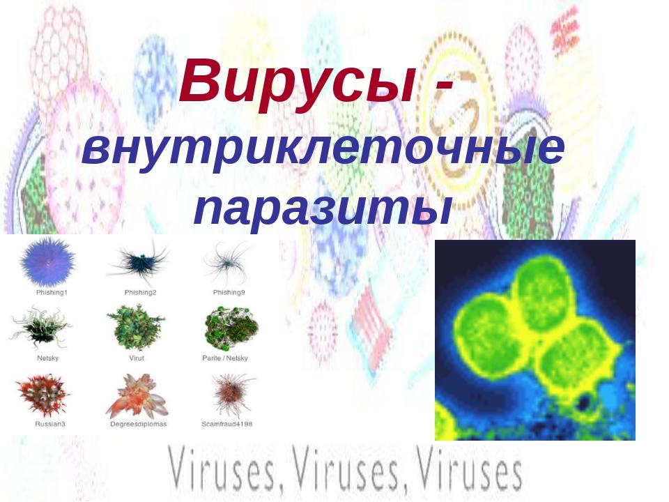 Вирусы - внутриклеточные паразиты