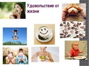 Удовольствие от жизни