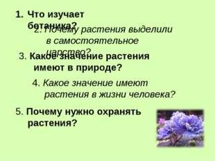 Что изучает ботаника? 2. Почему растения выделили в самостоятельное царство?