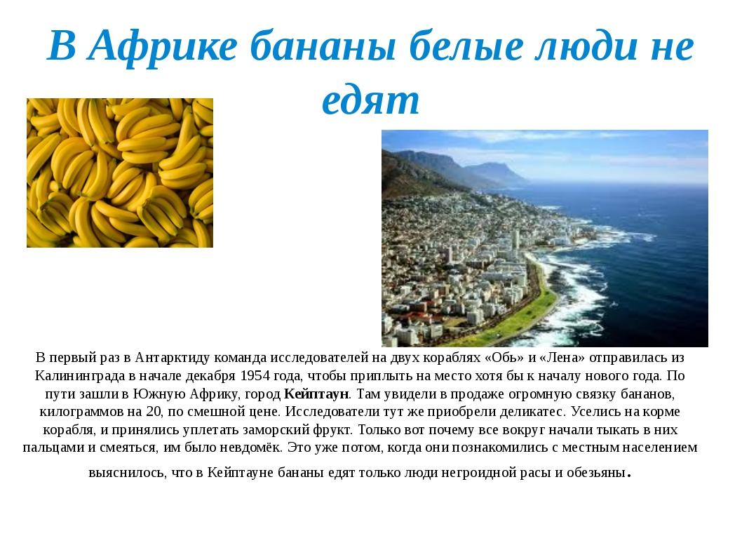 В Африке бананы белые люди не едят В первый раз в Антарктиду команда исследов...