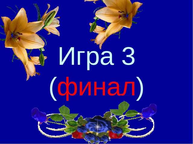 Игра 3 (финал)