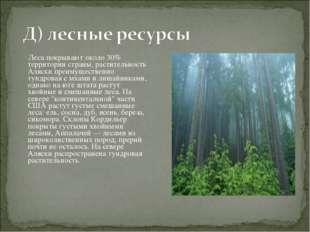 Леса покрывают около 30% территории страны, растительность Аляски преимущест