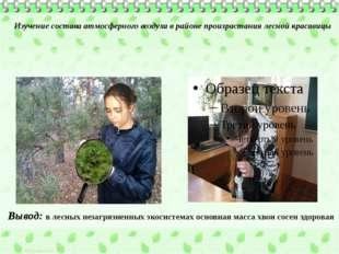 Изучение состава атмосферного воздуха в районе произрастания лесной красавицы