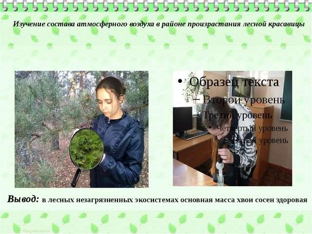 Изучение состава атмосферного воздуха в районе произрастания лесной красавицы...