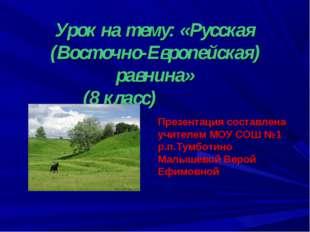 Урок на тему: «Русская (Восточно-Европейская) равнина» (8 класс) Презентация