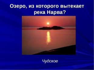 Озеро, из которого вытекает река Нарва? Чудское