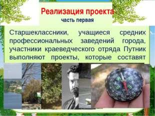 Реализация проекта часть первая Старшеклассники, учащиеся средних профессиона