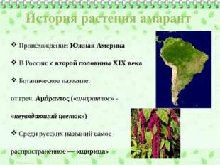 История растения амарант Происхождение: Южная Америка В России: с второй поло