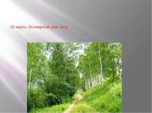 20 марта- Всемирный день леса.