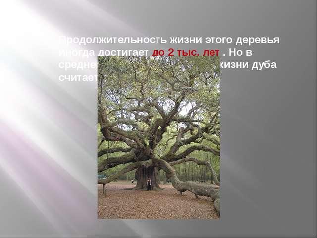 Продолжительность жизни этого деревья иногда достигает до 2 тыс. лет . Но в с...