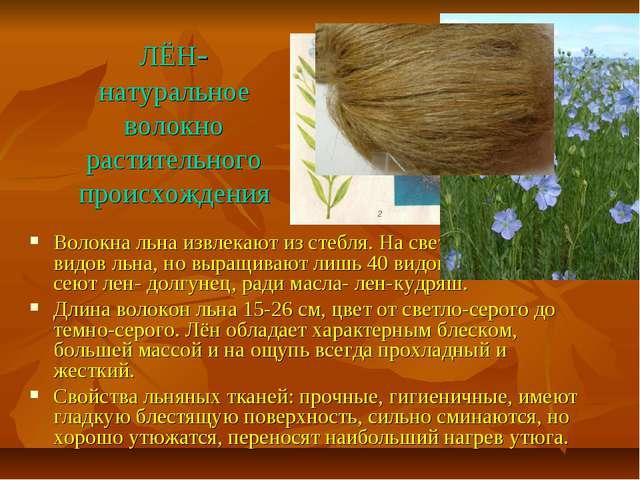 ЛЁН- натуральное волокно растительного происхождения Волокна льна извлекают и...