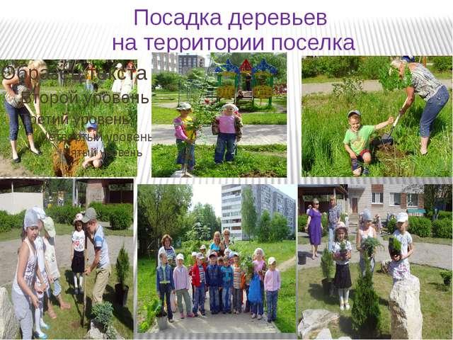 Посадка деревьев на территории поселка