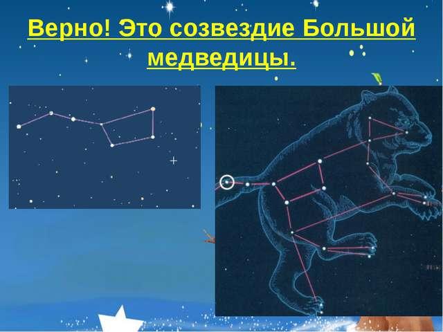 Верно! Это созвездие Большой медведицы.
