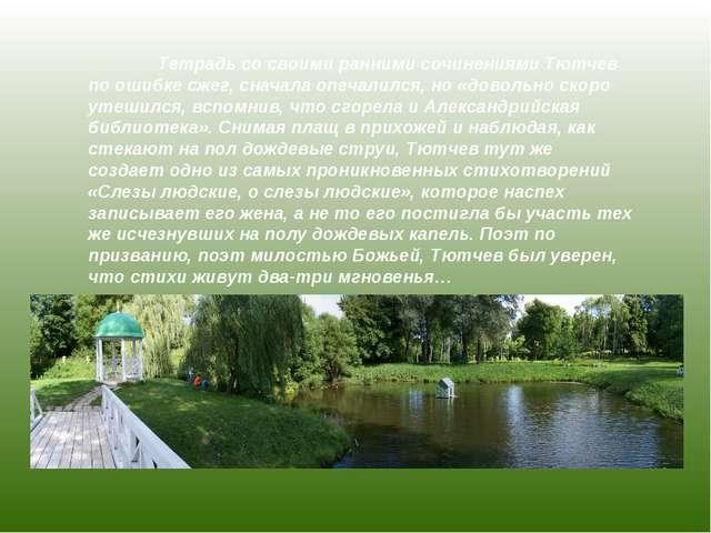 Тетрадь со своими ранними сочинениями Тютчев по ошибке сжег, сначала опечали...