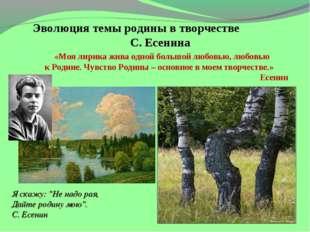 Эволюция темы родины в творчестве С. Есенина «Моя лирика жива одной большой