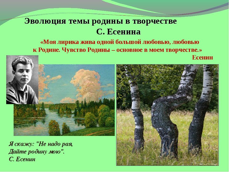 Эволюция темы родины в творчестве С. Есенина «Моя лирика жива одной большой...