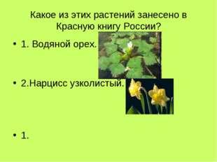 Какое из этих растений занесено в Красную книгу России? 1. Водяной орех. 2.На