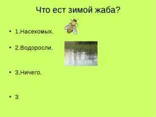 Что ест зимой жаба? 1.Насекомых. 2.Водоросли. 3.Ничего. 3
