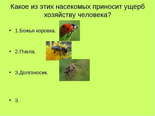 Какое из этих насекомых приносит ущерб хозяйству человека? 1.Божья коровка. 2...