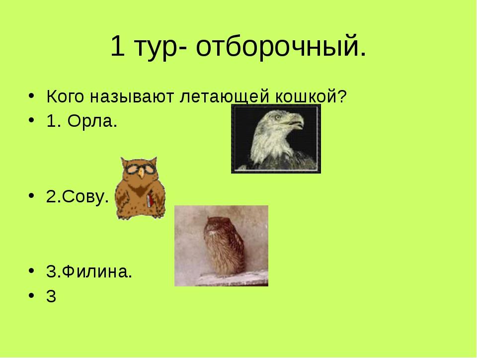 1 тур- отборочный. Кого называют летающей кошкой? 1. Орла. 2.Сову. 3.Филина. 3