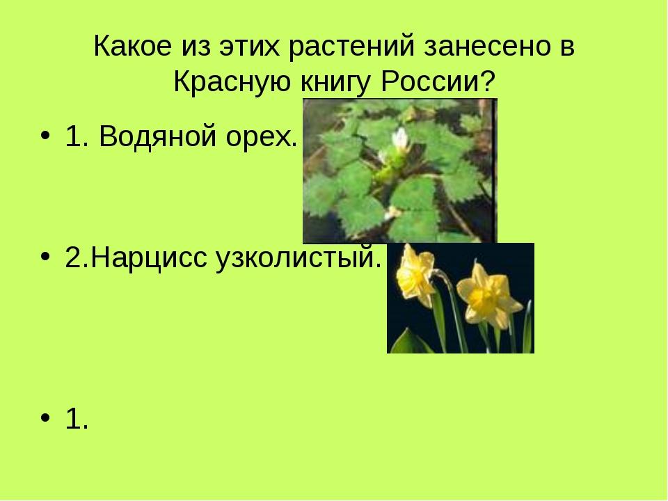 Какое из этих растений занесено в Красную книгу России? 1. Водяной орех. 2.На...